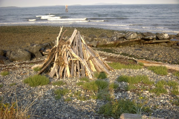 Driftwood sculpture at another Salish Sea site--a Bellingham Bay beach.